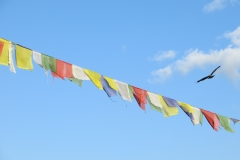 Swayambhunath prayer flags