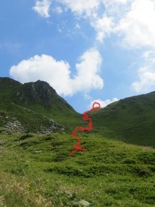 """Trail"""