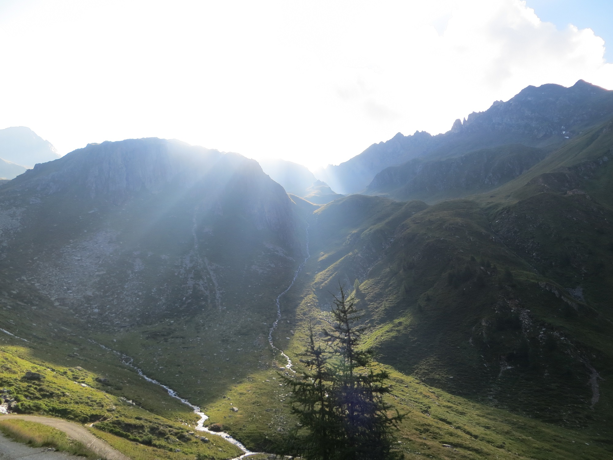 Hiking in the Alps_Summary