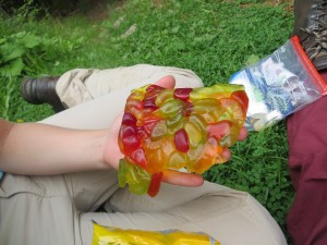 even our sweets melted in the previous days heat!